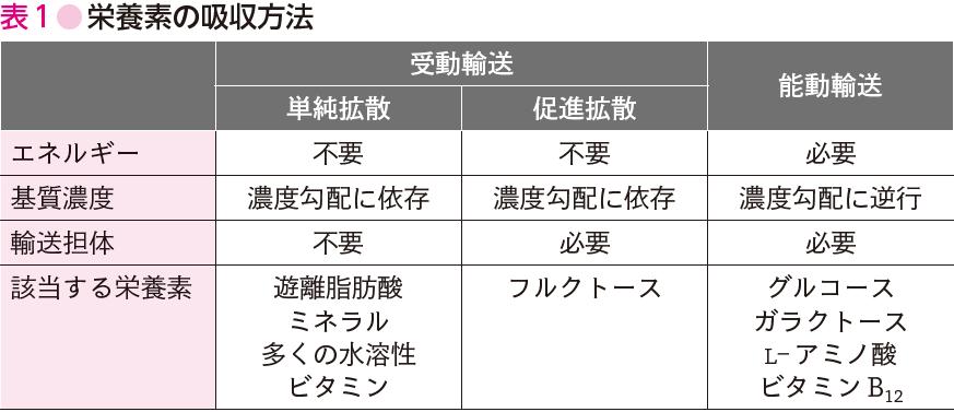 2] 受動輸送と能動輸送[passive transport and active transport ...